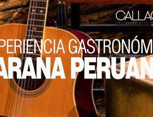 Jarana Peruana. Come con Pisco 10 de Mayo 2019